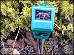 Plant Wizard for soil ph measurement